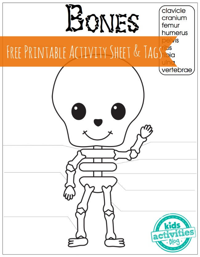 Skeleton Bones Free Printable Activity Sheet And Tags For Kids Jpg