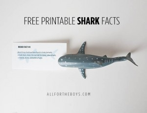 free printable shark facts for shark week