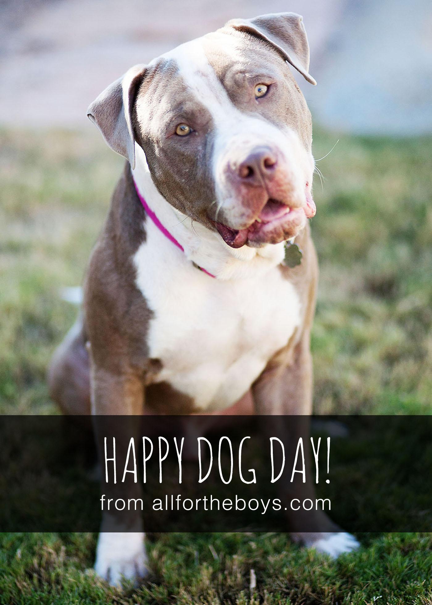 National dog day!