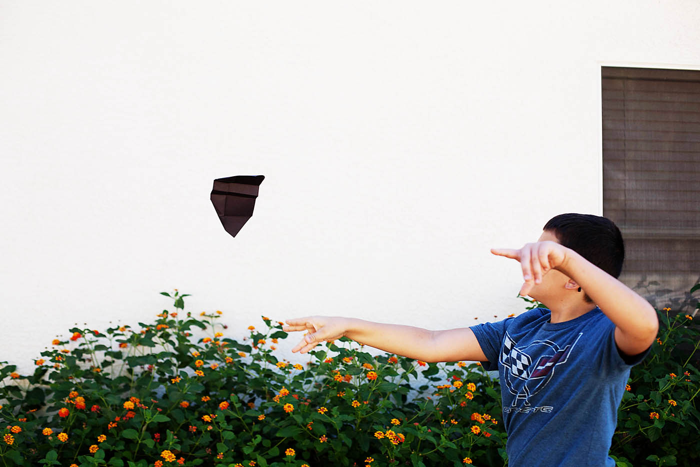 Folded flying bat