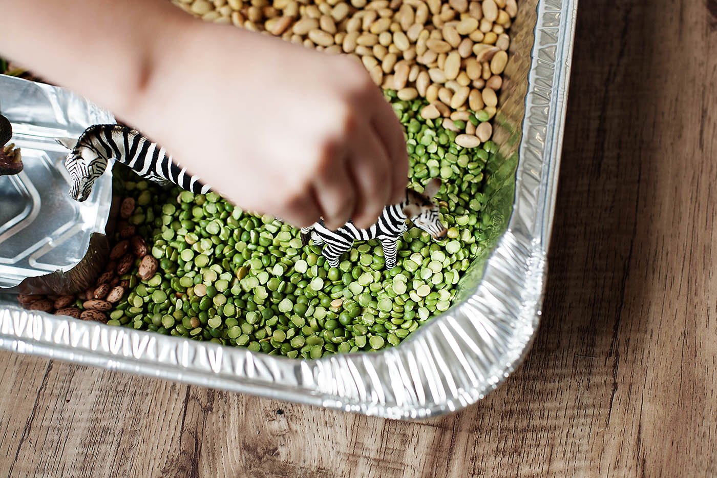 Animals of Africa sensory bin / playset