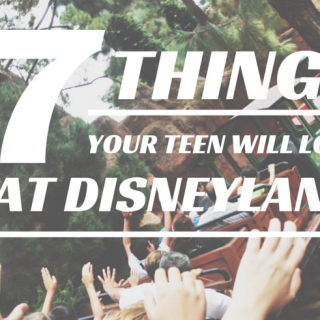 7 Things Your Teen (or Tween) Boy Will Love at Disneyland