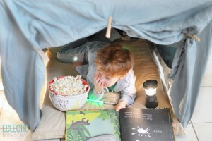 table_fort-1024x683.jpg