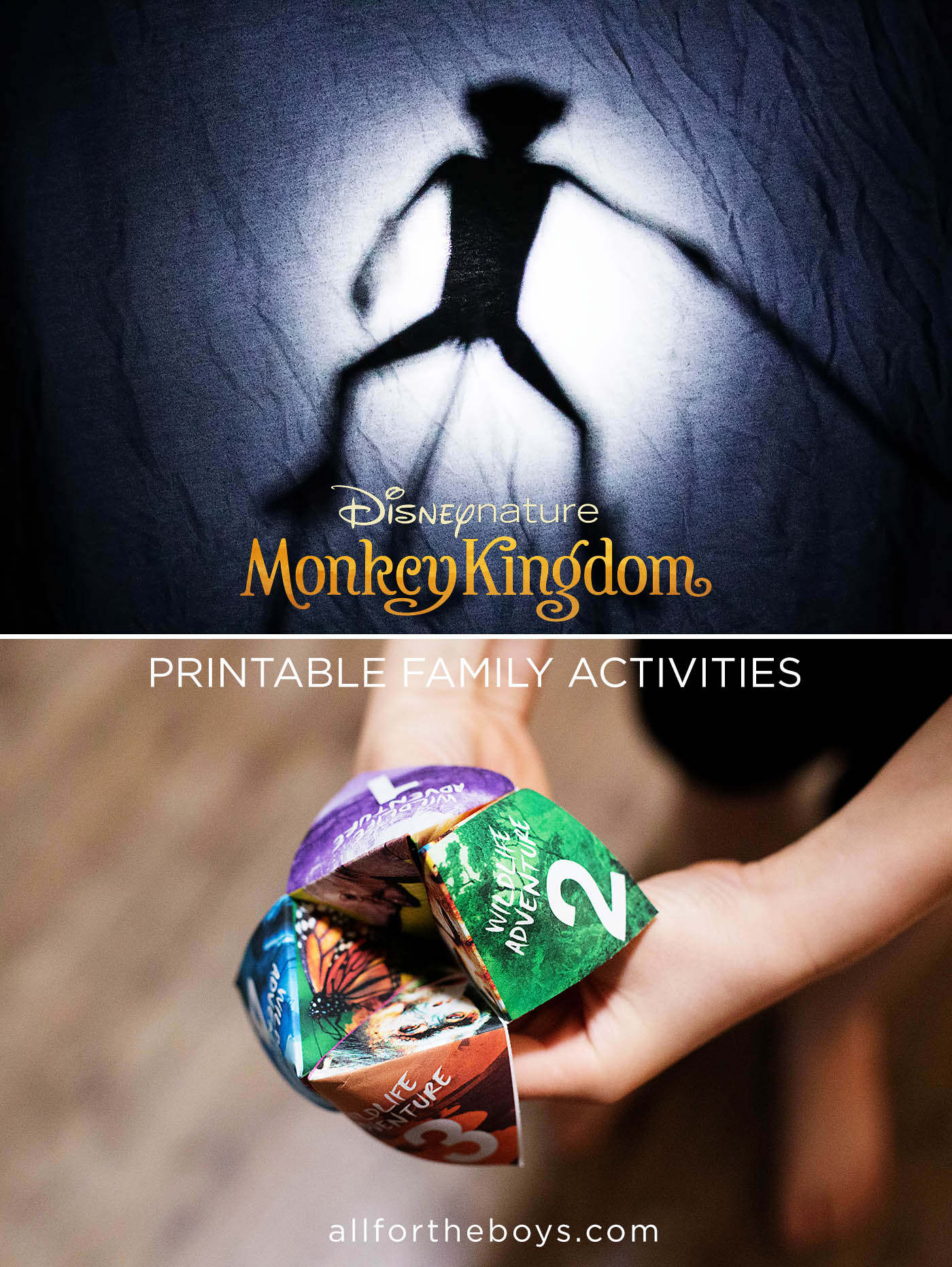 Disney Nature Monkey Kingdom activity pack + Printables