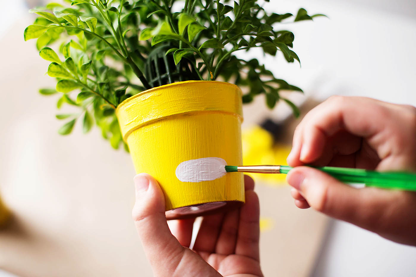 DIY emoji flower or plant pot