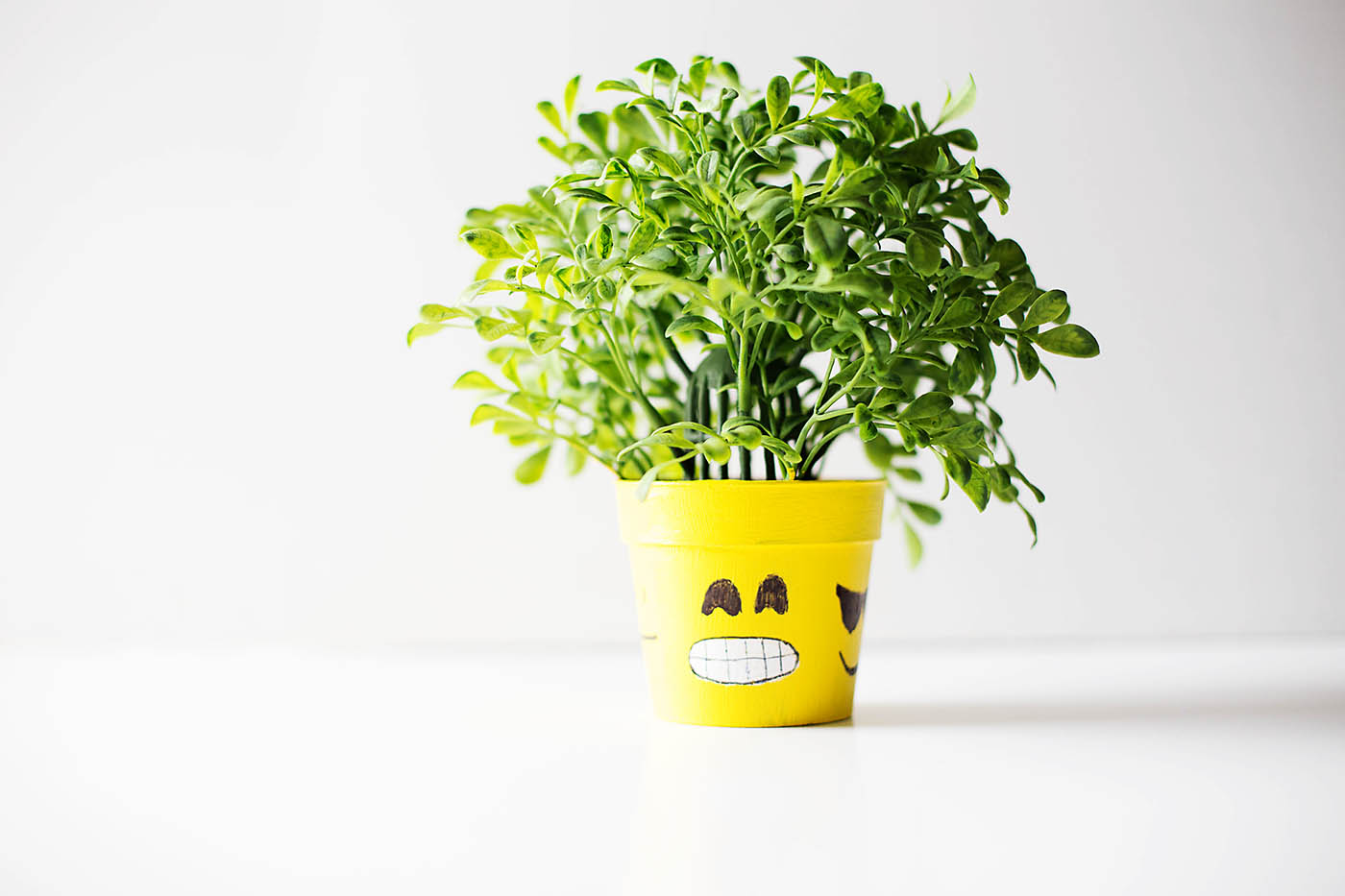 Diy Emoji Flower Pot How Are You Feeling Today All For The Boys