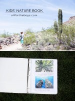 DIY Nature Book