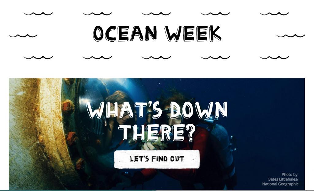 Camp Google - Ocean Week