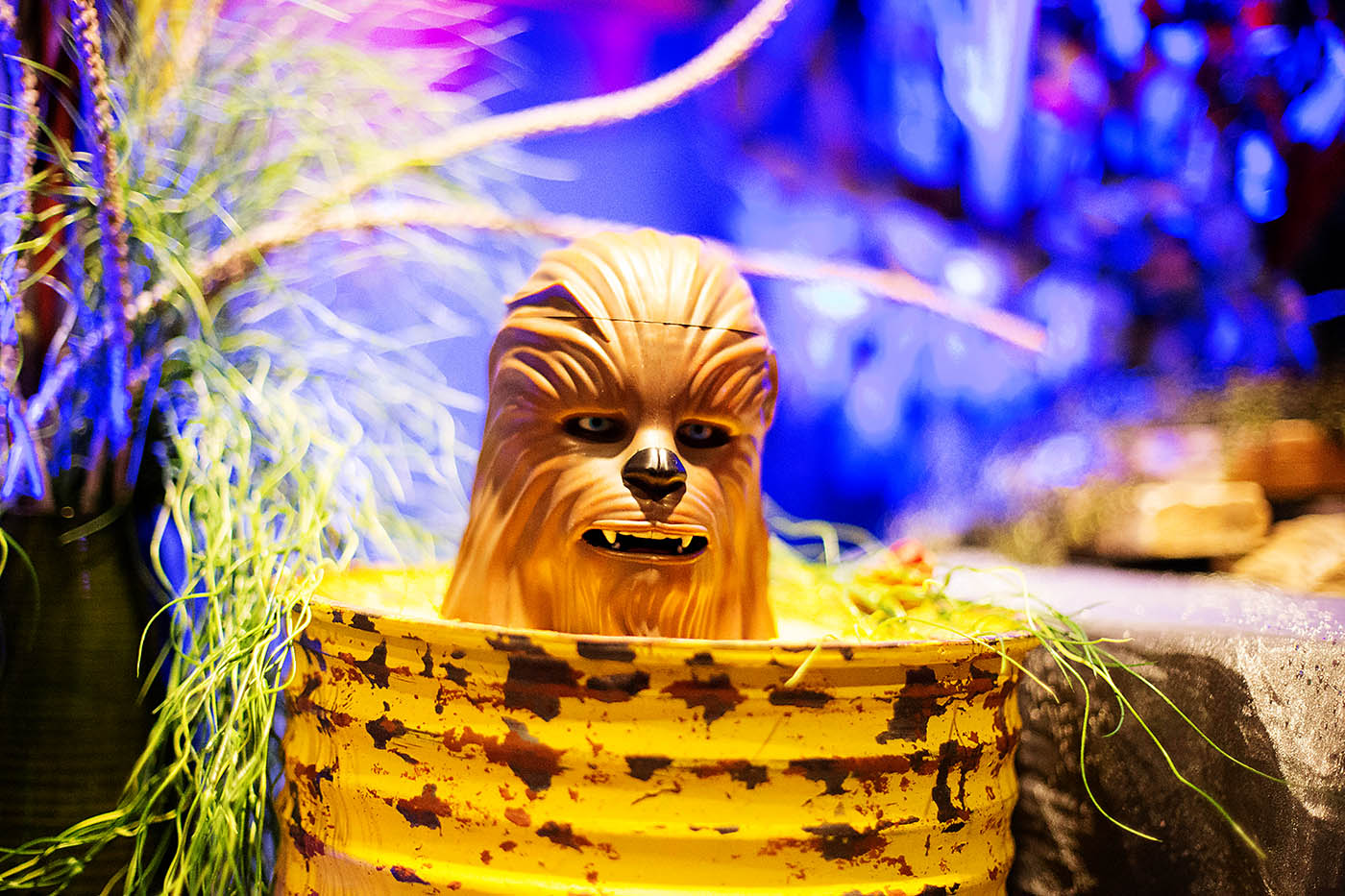 5 Ways to Celebrate Star Wars at Disneyland during Season of the Force!