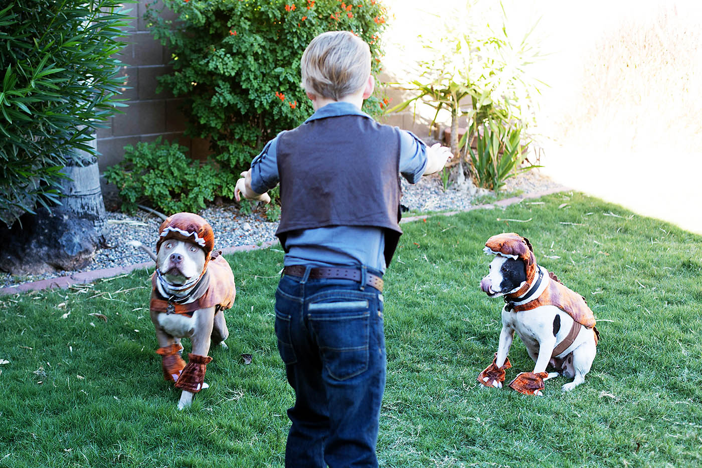 "Owen Grady with ""raptor"" dogs!"