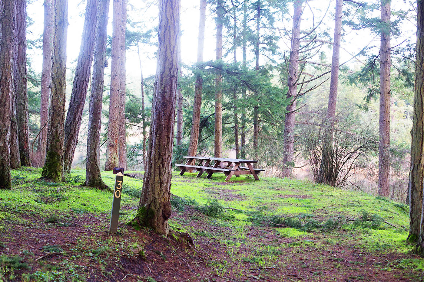 Lakedale campsite on San Juan Island near Washington