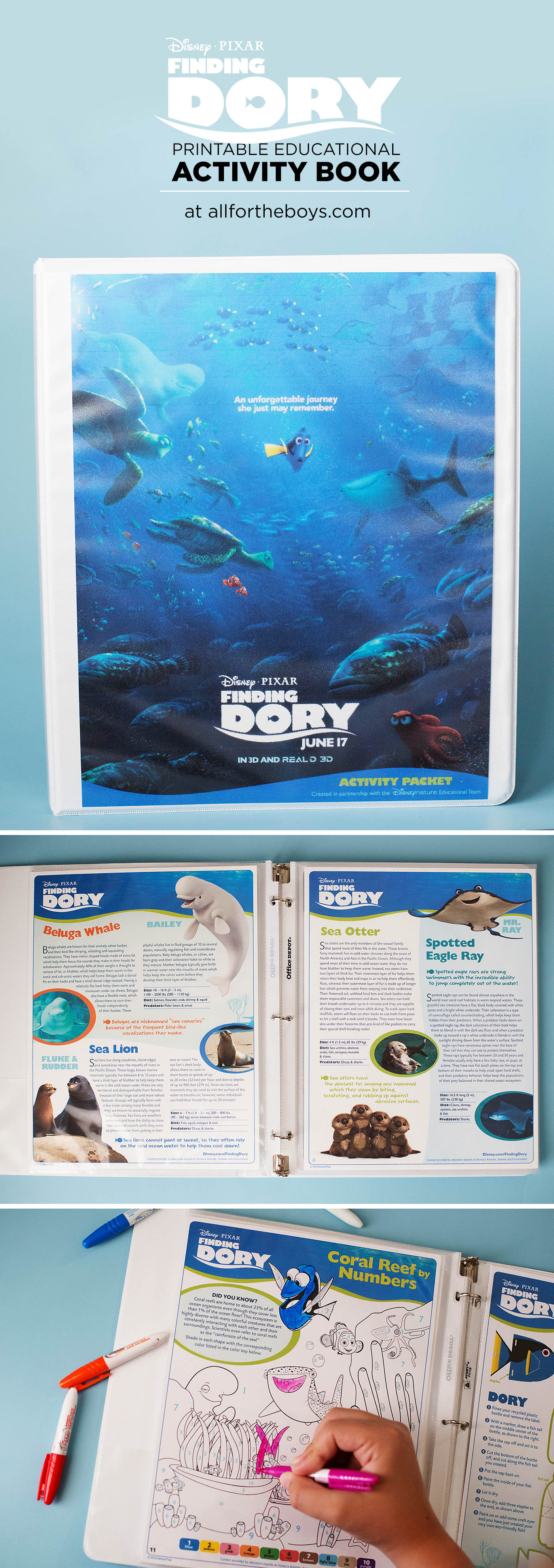 Finding Dory printable educational activity book