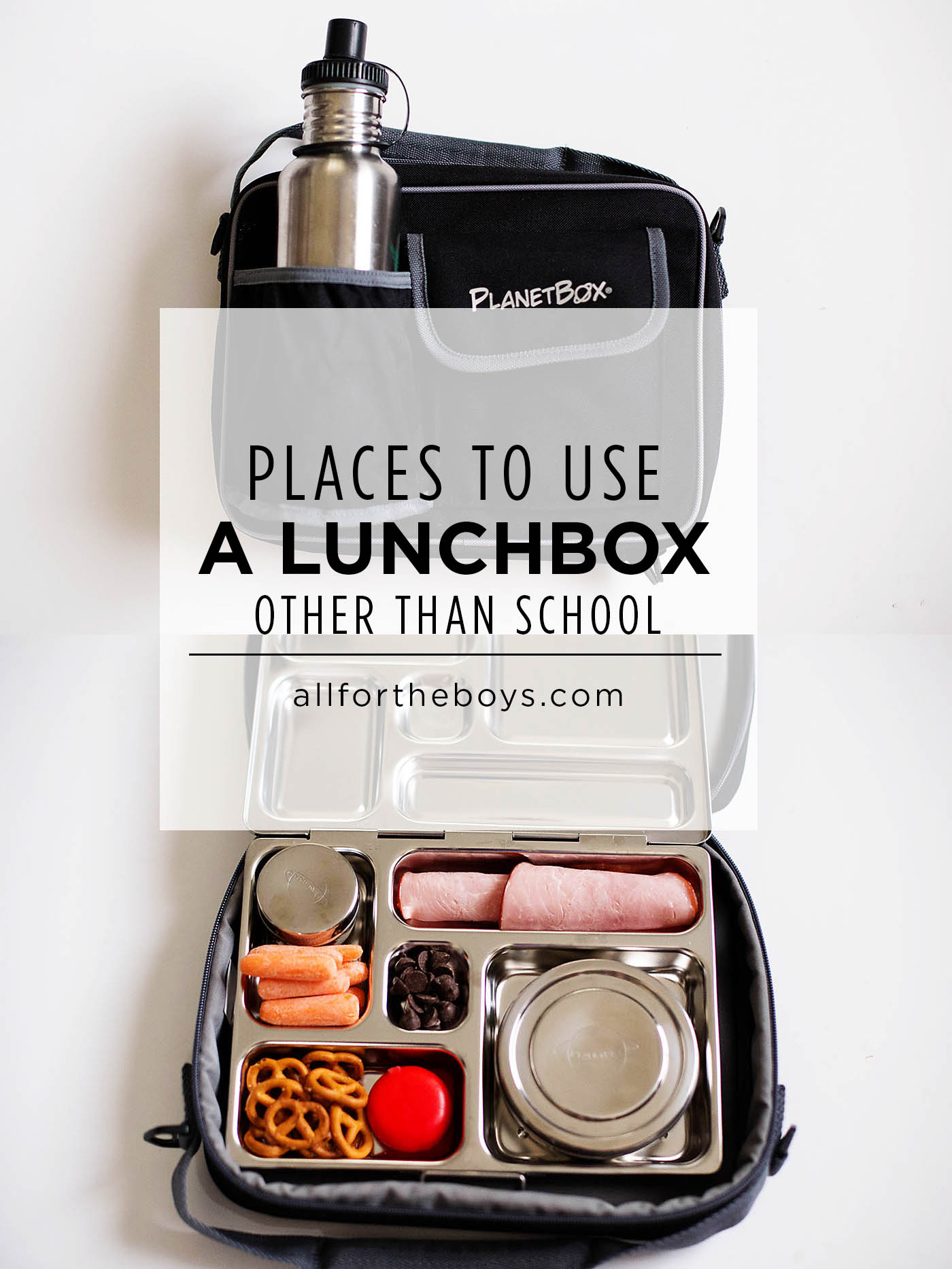 Places to use a lunchbox beyond school