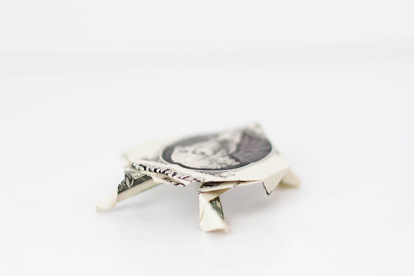 Origami dollar bill sea turtle
