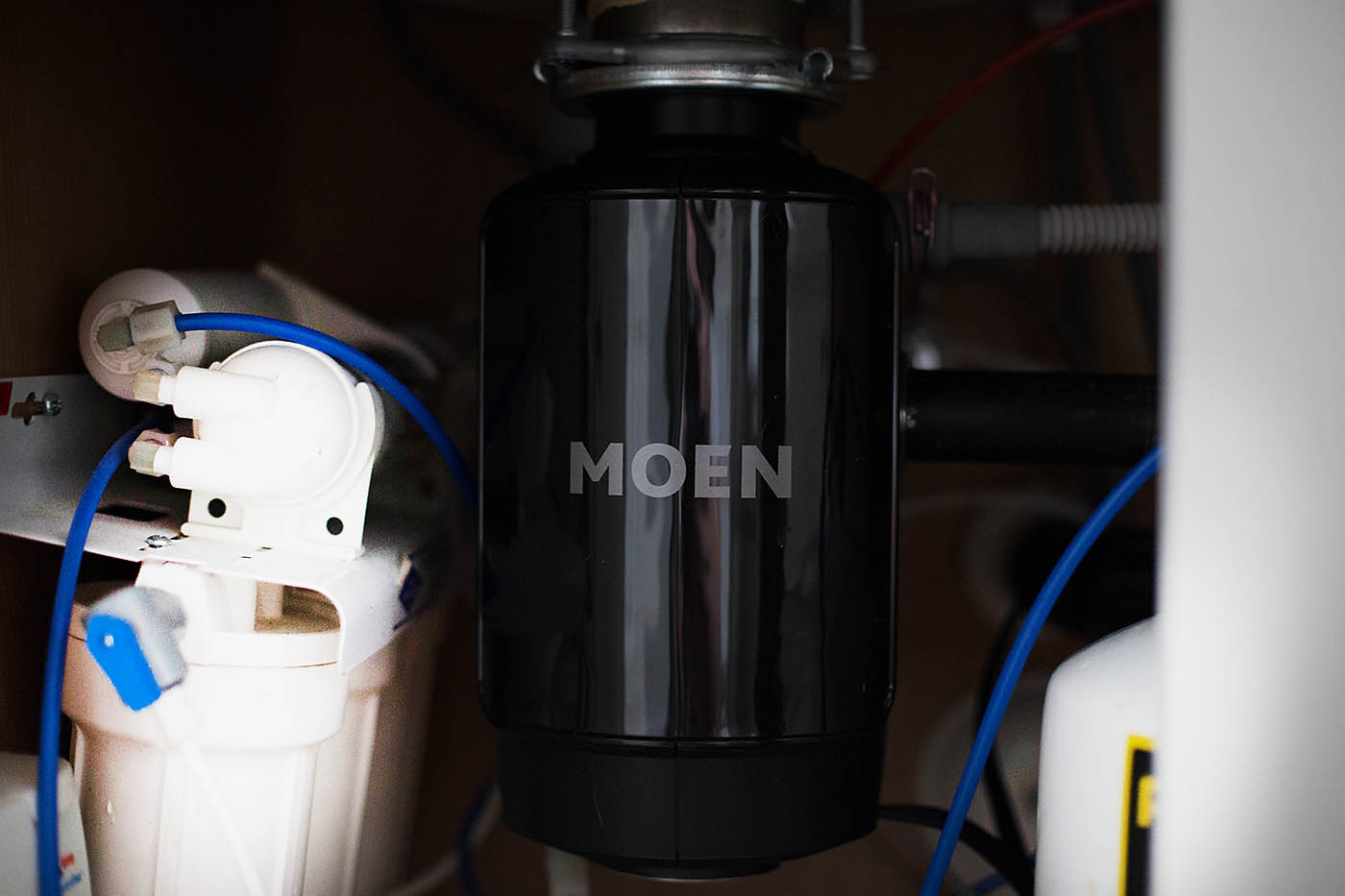 Moen disposal