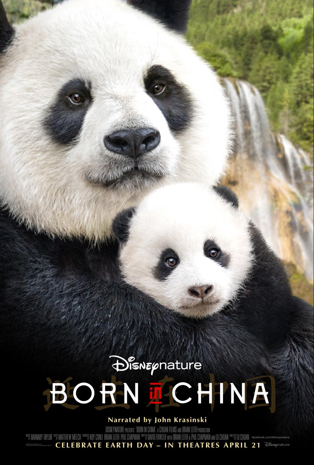 Born in China Teen Review and Printable Activities
