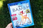 Bambi Outdoor Movie Night with Backyard Camping Food Ideas