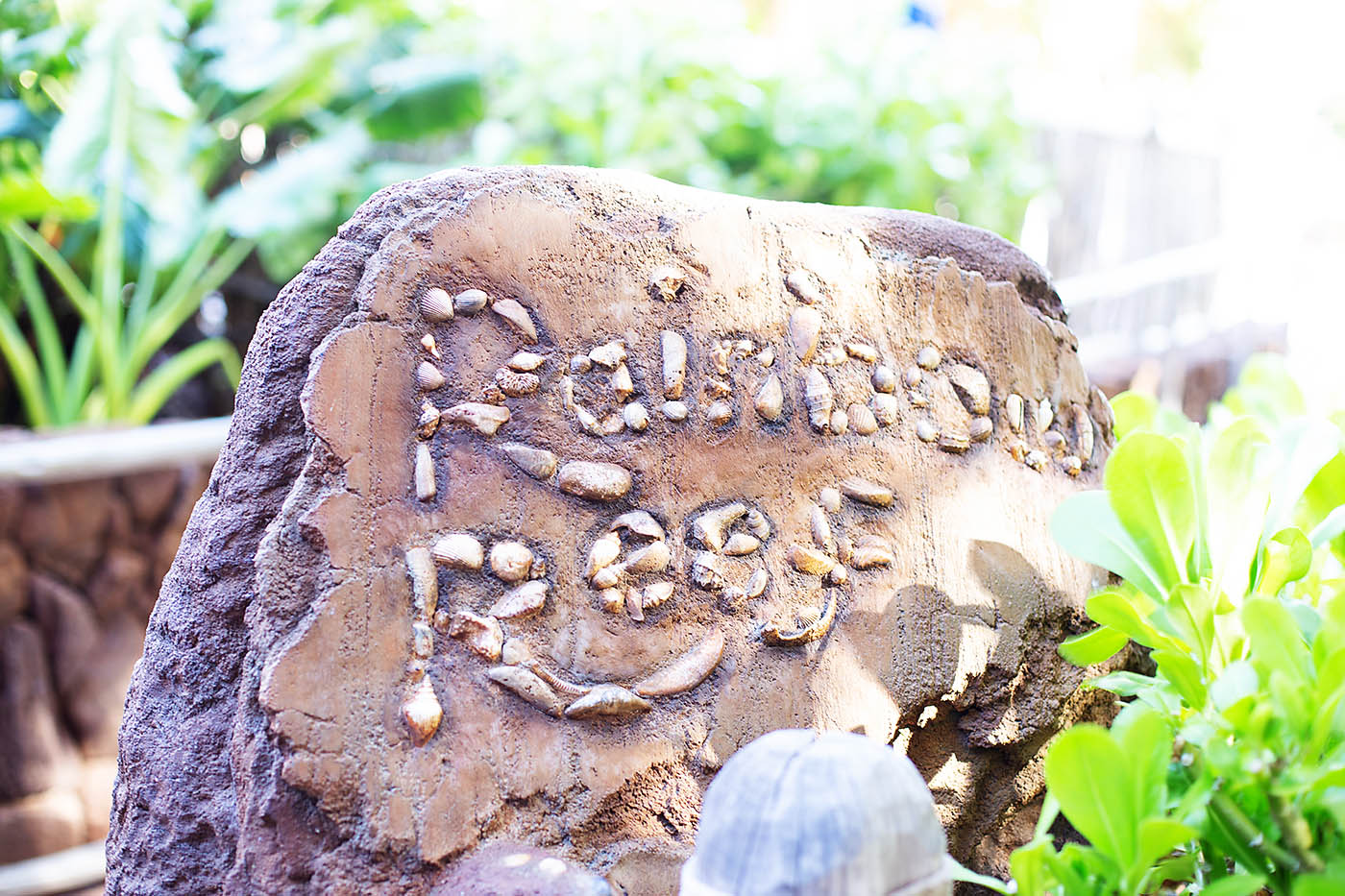 Disney Aulani with teens - snorkeling at Rainbow Reef