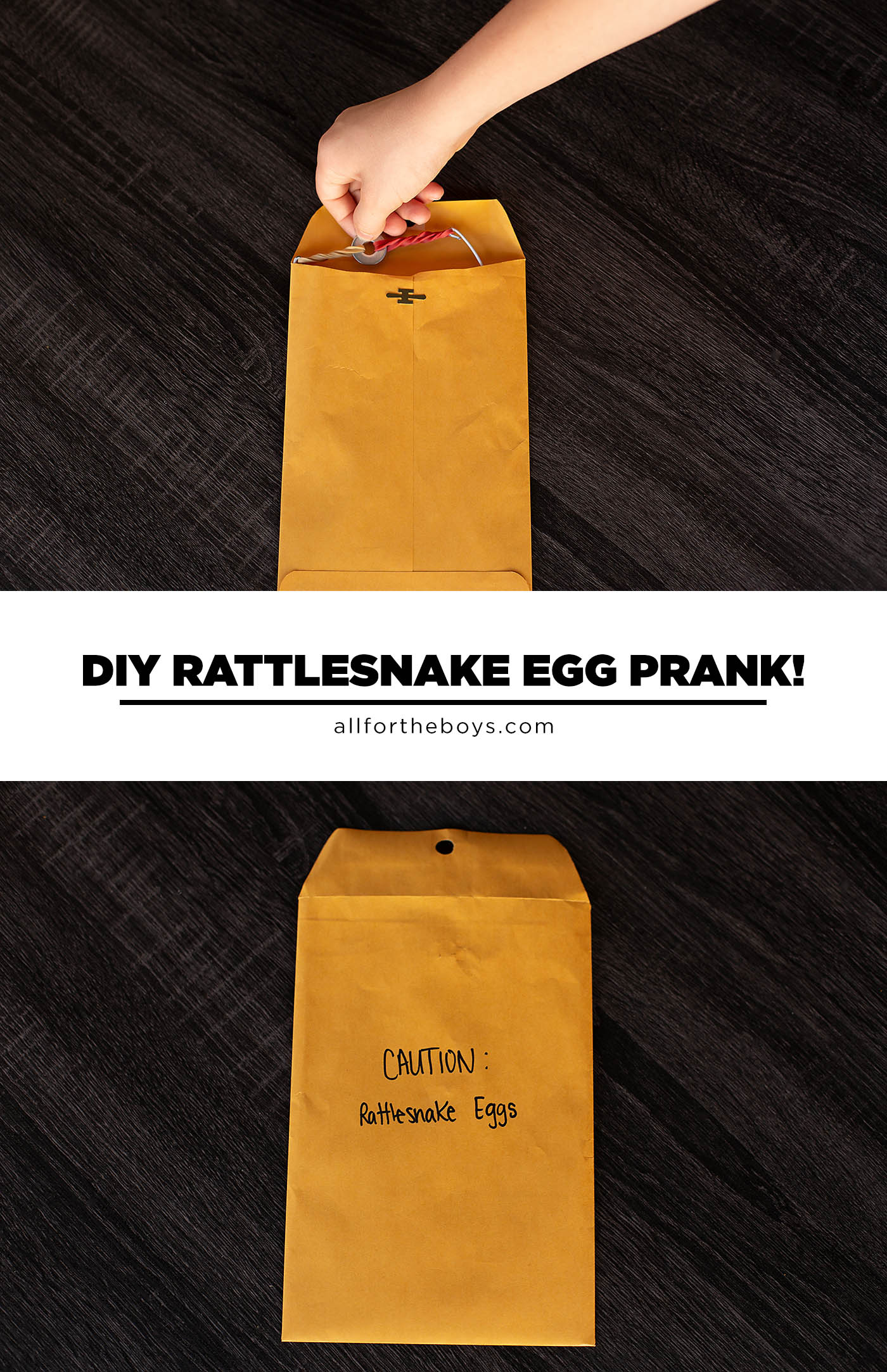 DIY Rattlesnake Egg Prank - fun DIY prank for tweens and teens!