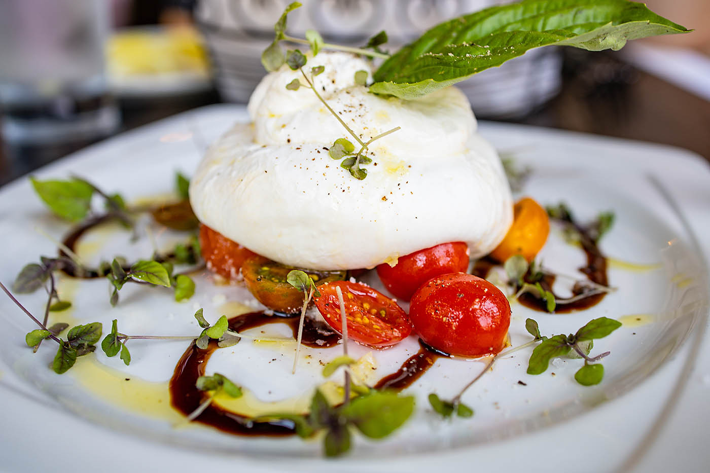 Fresh burrata cheese with tomatoes