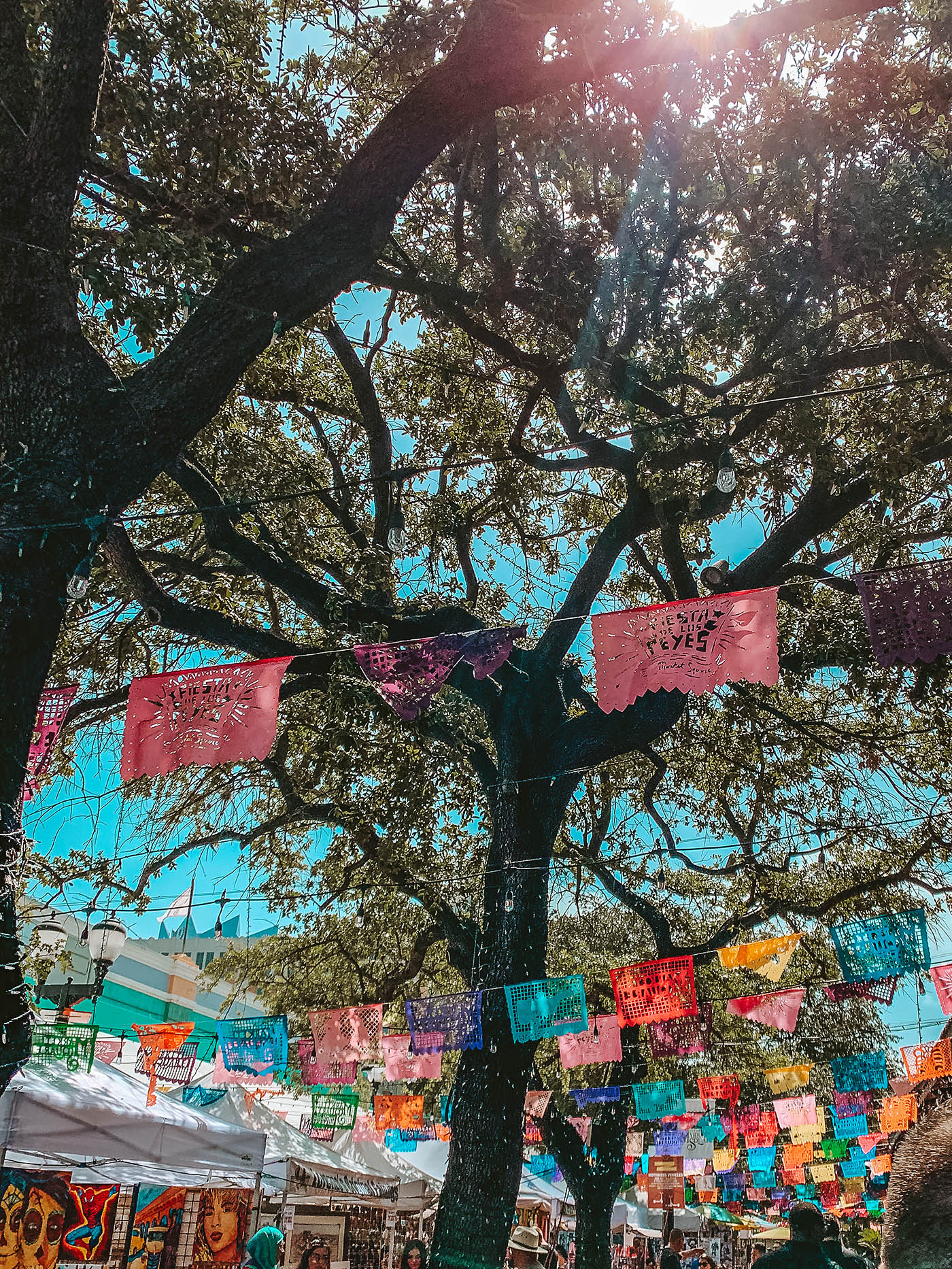 Colorful flags hanging from a tree