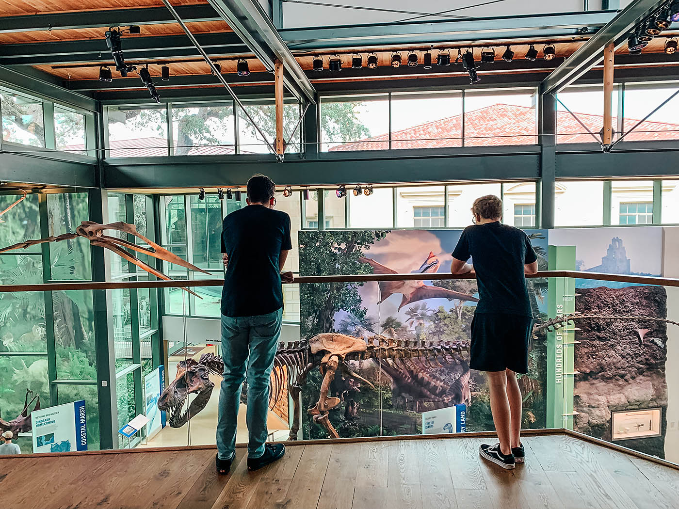 Teenaged boys looking down on a mural and dinosaur skeletons at a museum